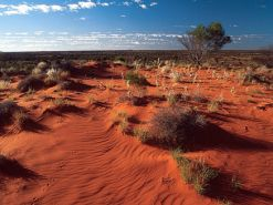 Autralien Outback Alice-Springs Rotes-Zentrum
